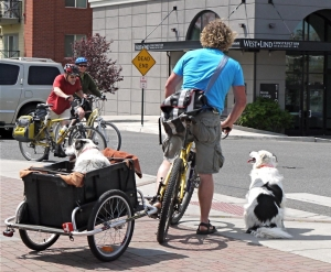 Alternative Transportation, Cynthia St. Clair.  Photo provided courtesy of the City of Bellingham
